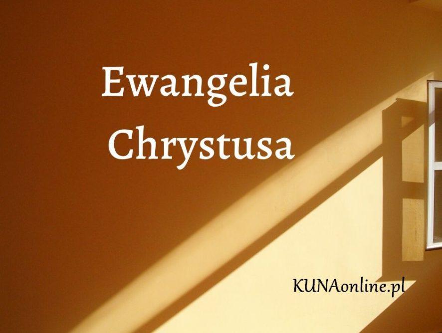 EWANGELIA 17 CZERWCA 2020 + komentarz