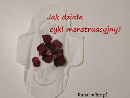 Jak działa cykl menstruacyjny? Basia opowiada ;-)